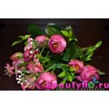 Букет камелий розовый
